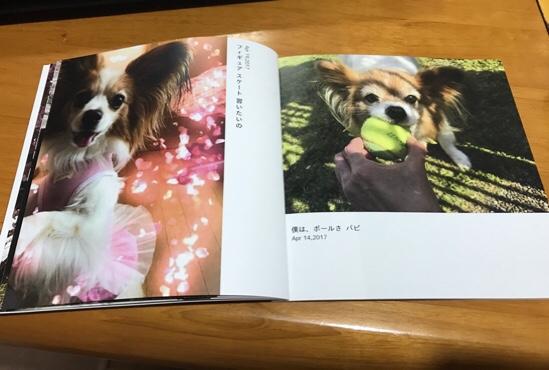 fc2blog_201704291942176dd.jpg