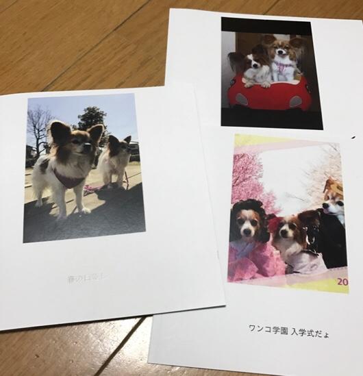 fc2blog_20170430202333726.jpg