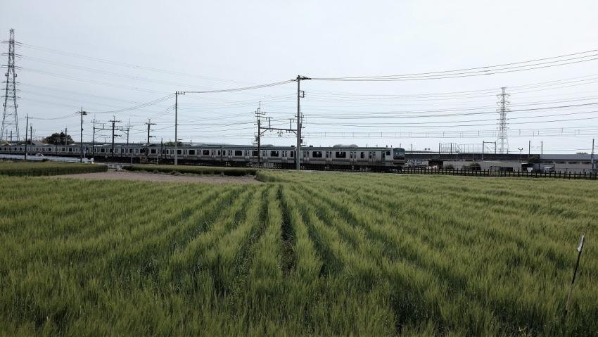 DSCF0451b.jpg