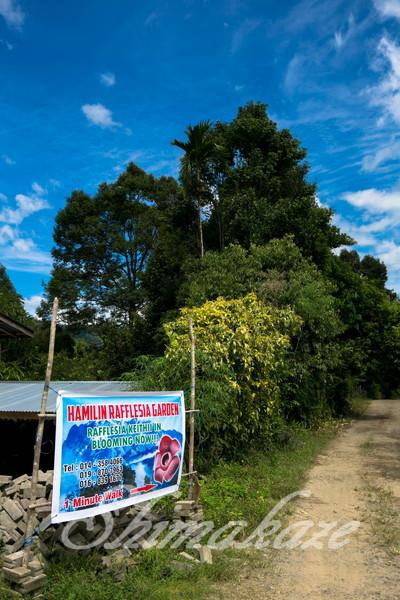 ユネスコの世界遺産『キナバル山』