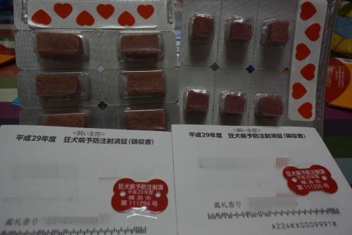 DSC_6000a.jpg