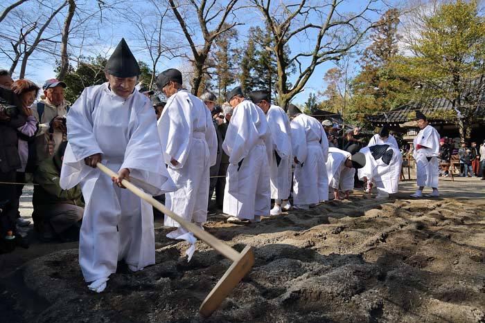 鏡作神社 御田植祭4