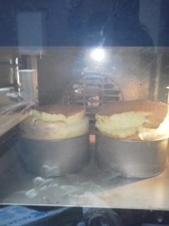 チーズケーキ焼成+1個