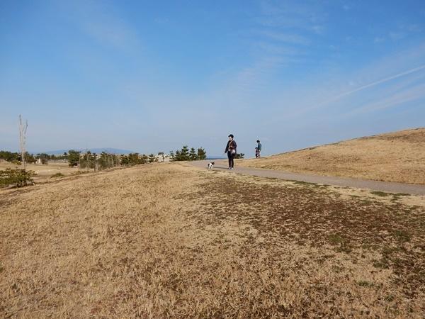 青空と広い公園