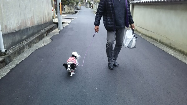 梅本さんから歩いて