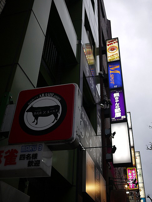 ARASHI annex