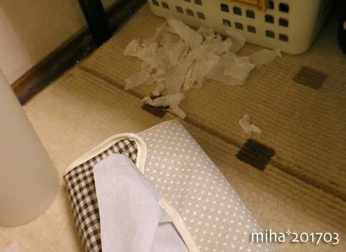tissue17-03.jpg