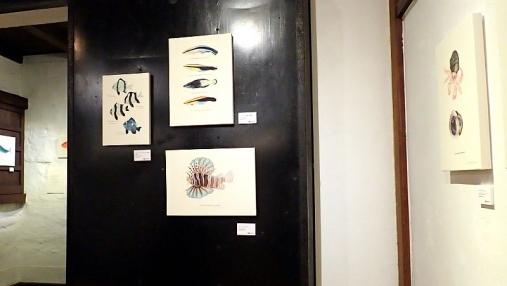 魚の肖像Ⅱ 2017-05-02 (14)