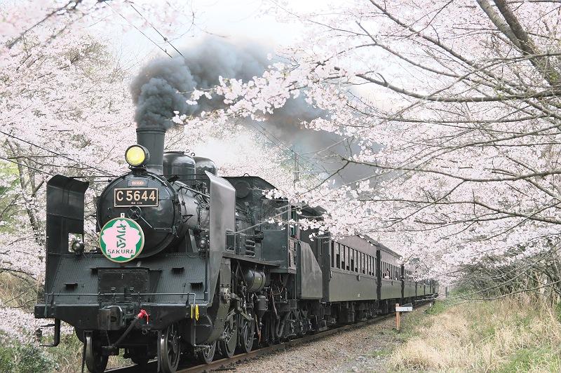 春色の汽車に乗って…