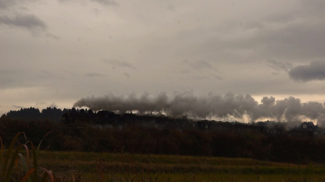 田舎らしい景色の中を行く、羽根川鉄橋に向かう汽車