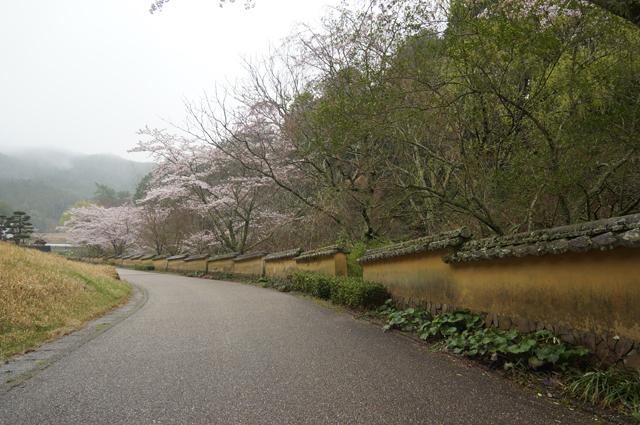 松平郷の室町塀
