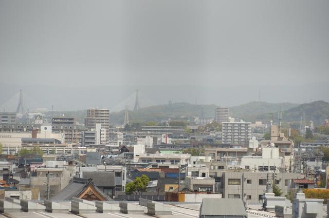 岡崎城より大樹寺を望む