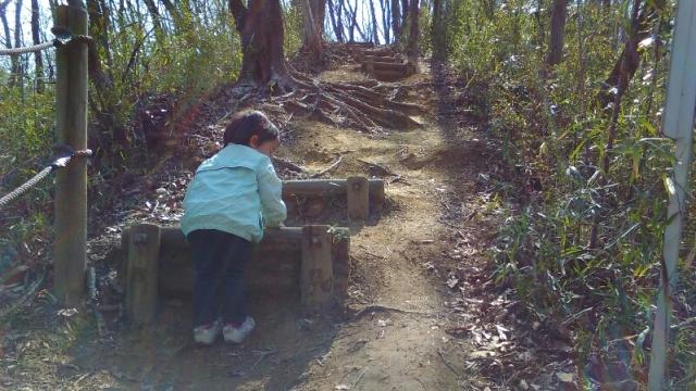 長沼公園 西尾根を登る子供