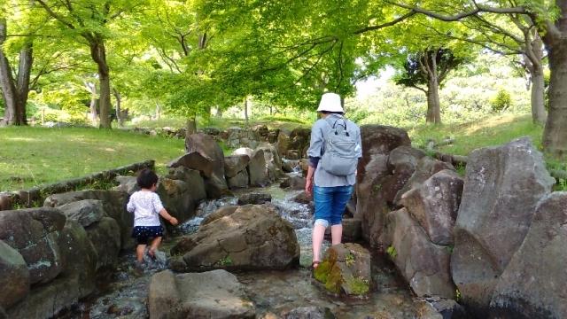 府中郷土の森の水遊びができる沢