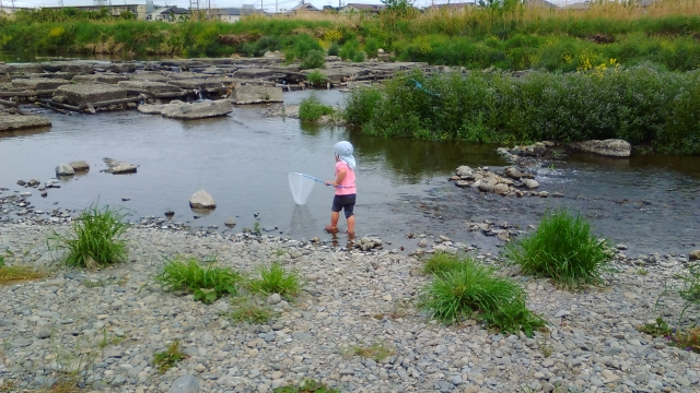 浅川で川遊び