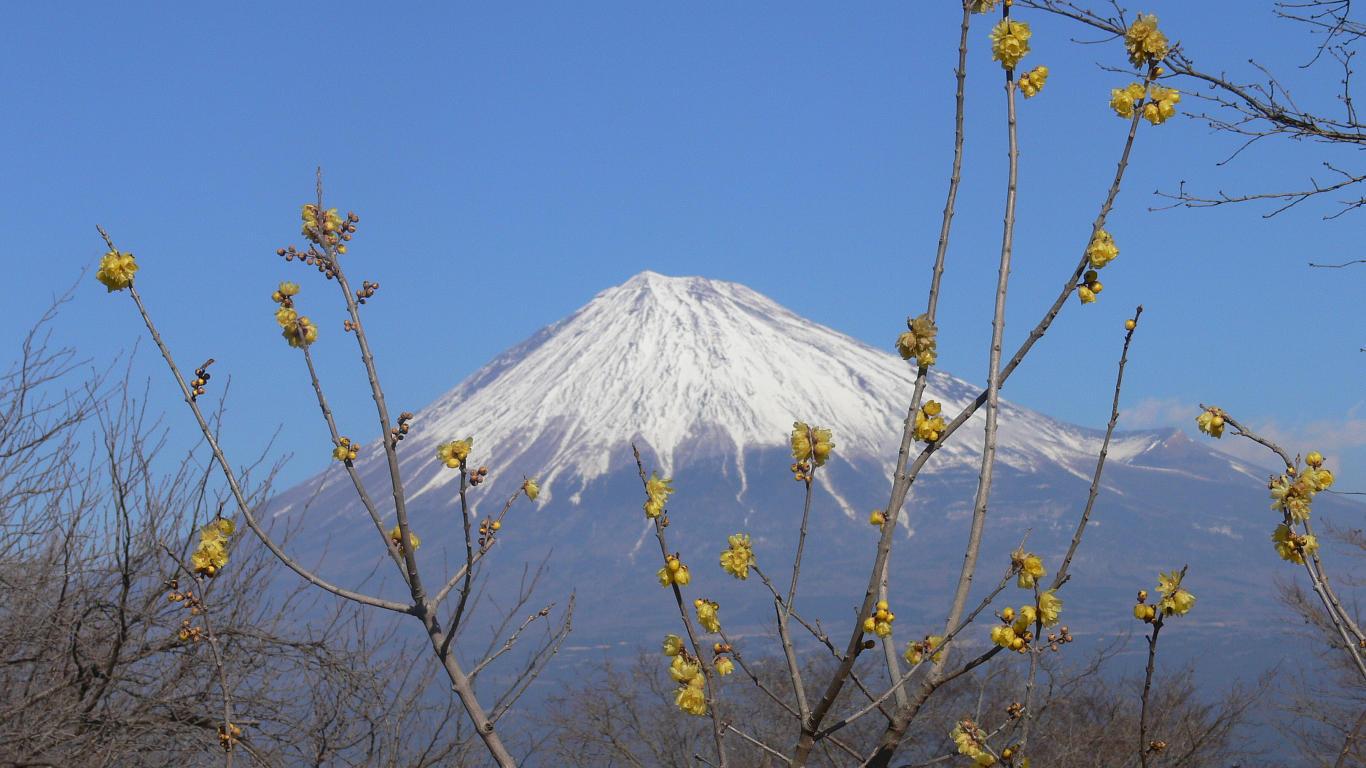 090116岩本山011