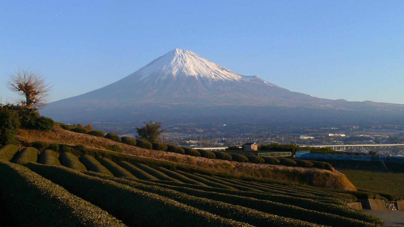 090116朝の岩本山001