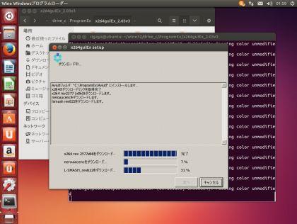 UbuntuAviutlTest024