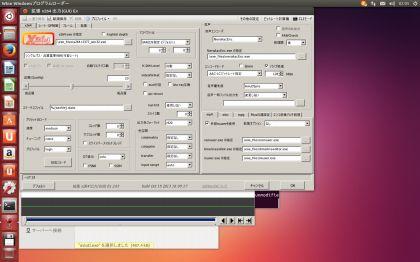 UbuntuAviutlTest025