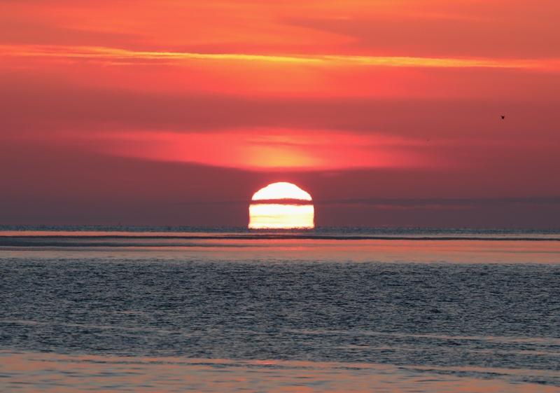 変形太陽8170216