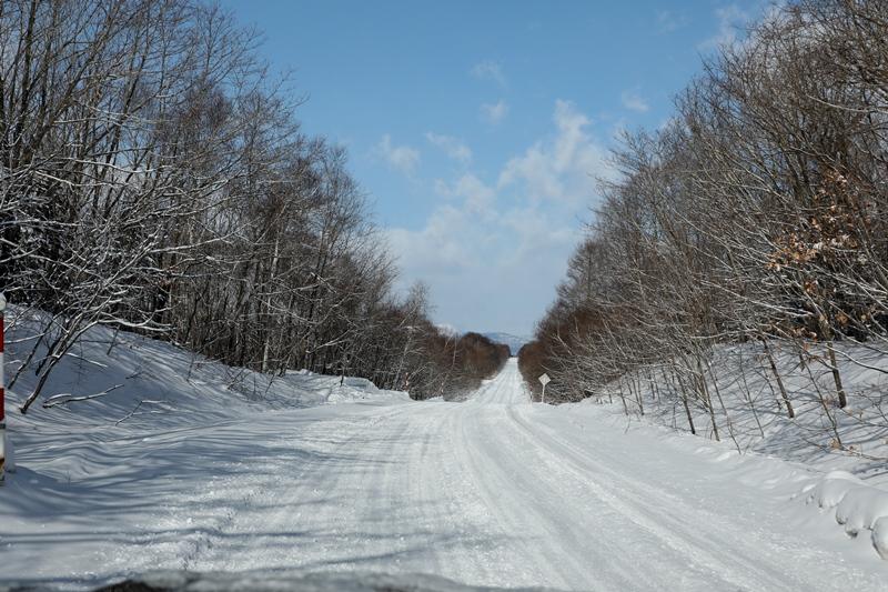 雪の風景1170218