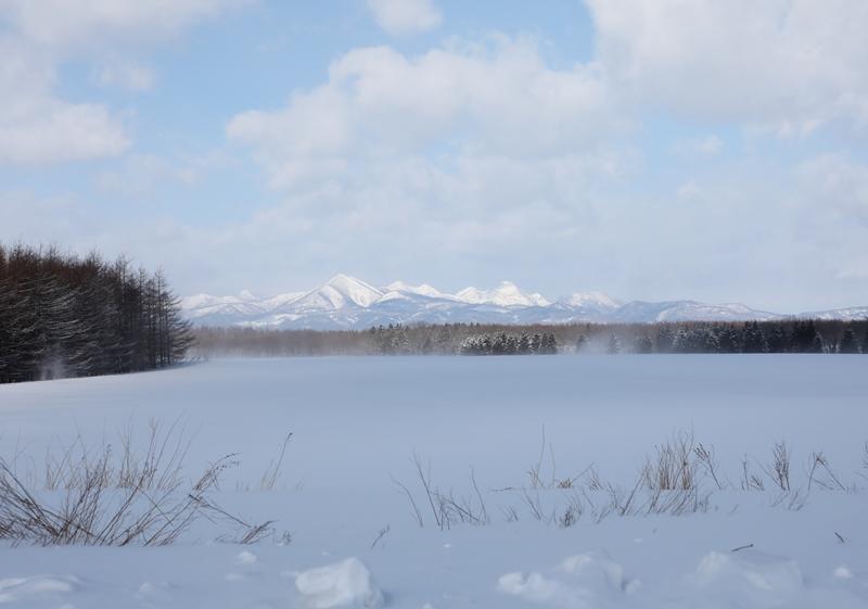 雪の風景3170218