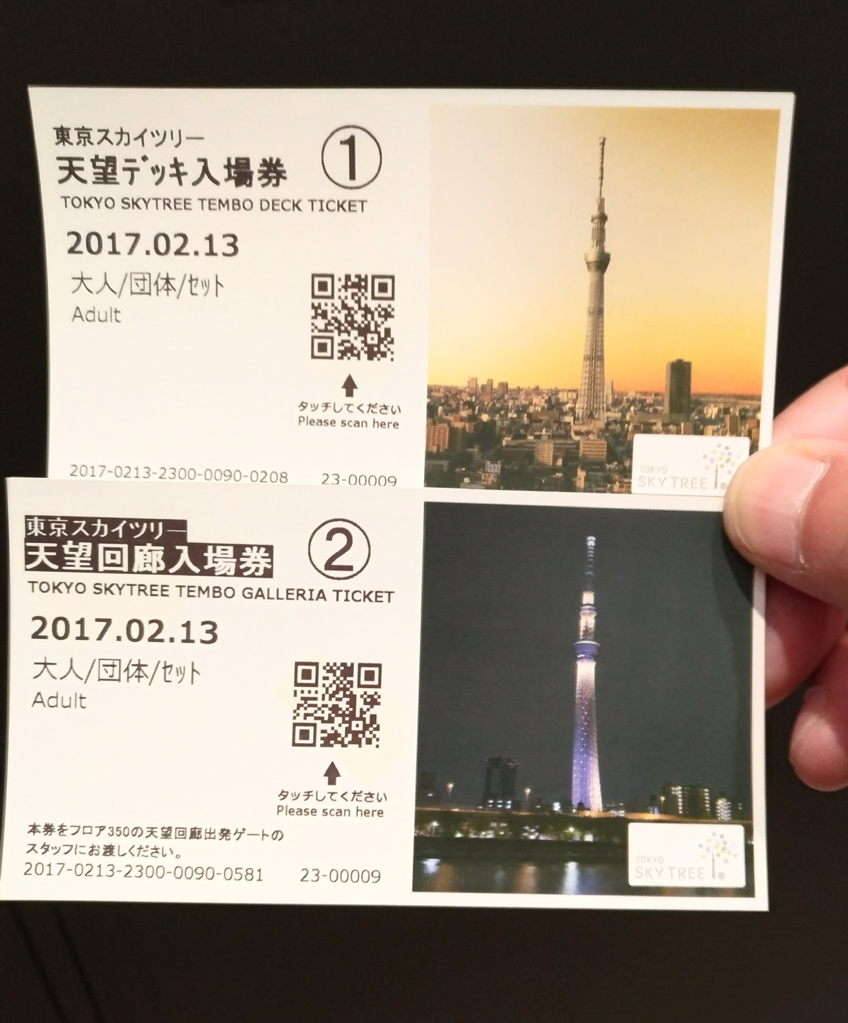 P_20170213_101649_HDR.jpg