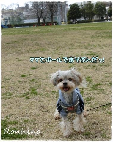 ぽかぽか公園③