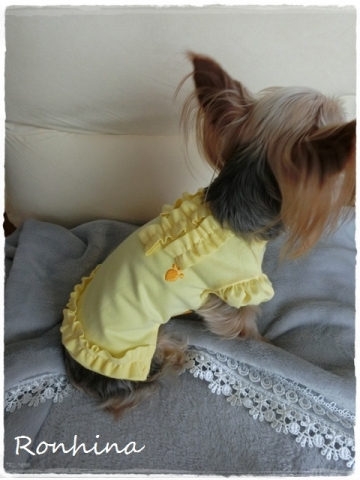 黄色の洋服②