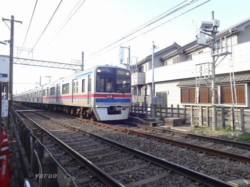 DSC01320.jpg