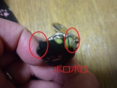 blog11483.jpg