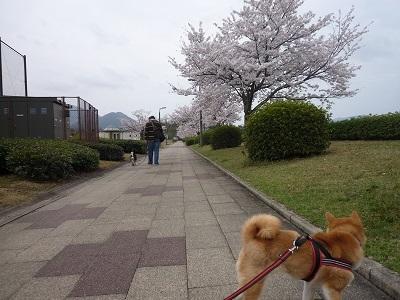 blog11598.jpg