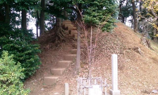 170331_kizorohujiduka.jpg