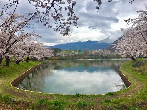 矢木羽湖1