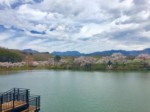 矢木羽湖11