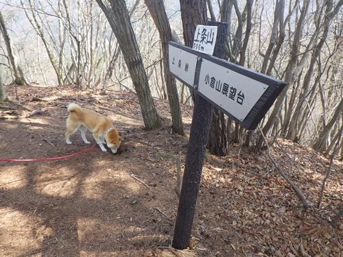 小倉山27