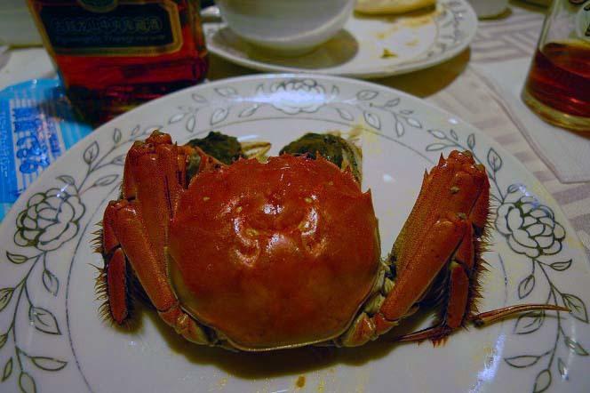 20170217上海_上海蟹