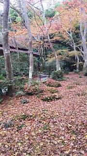 20161123祇王寺(その5)