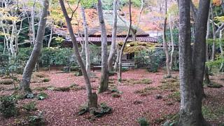 20161123祇王寺(その8)