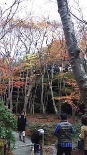 20161123祇王寺(その16)