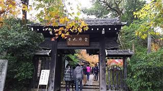 2016+1123常寂光寺(その1)