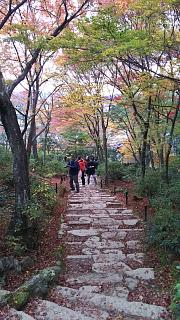 2016+1123常寂光寺(その9)