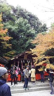 2016+1123野宮神社(その2)