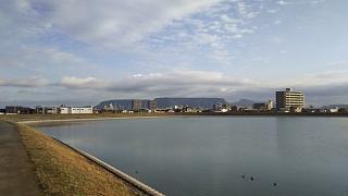 20161124野田池(その4)