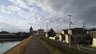 20161124野田池(その6)