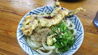 20161124さか枝(その1)