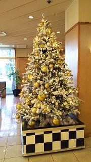 20161125高松国際ホテル(その7)
