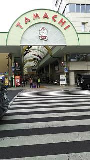 20161125綿谷(その1)
