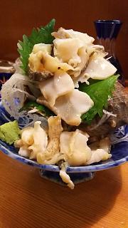 20161126吉甲(その14)