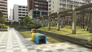 20161204芝浦中央公園(その1)